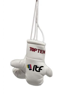 Top Ten ITF Mini boksa cimdi