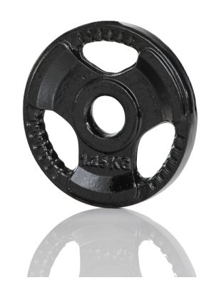 Gymstick Iron Weight Plate