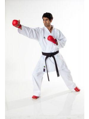 Tokaido Kumite Master Karategi